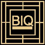 Beauty IQ Pro
